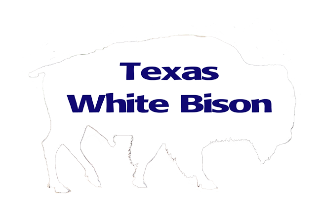 TEXAS WHITE BISON WEBSITE